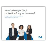 Buyer's guide: What's the right DDoS protection for your business?