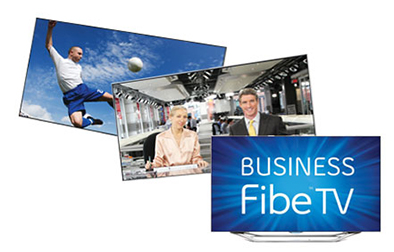 Business Fibe TV